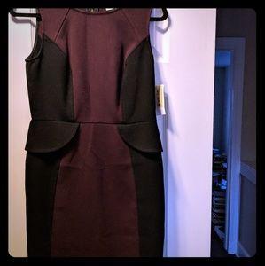 Form loving Ann Taylor Loft Dress